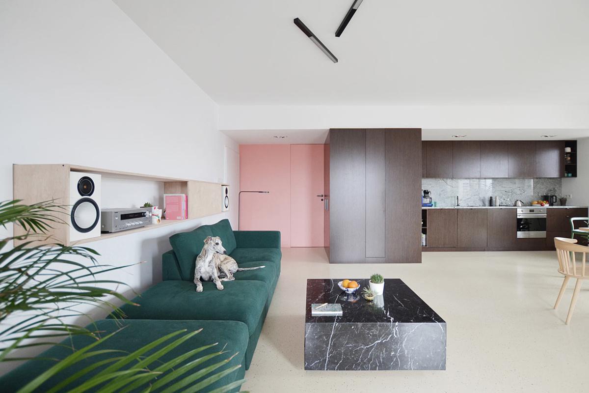 Gregorz Layer (Польша). Просторная квартира для владельцев собак