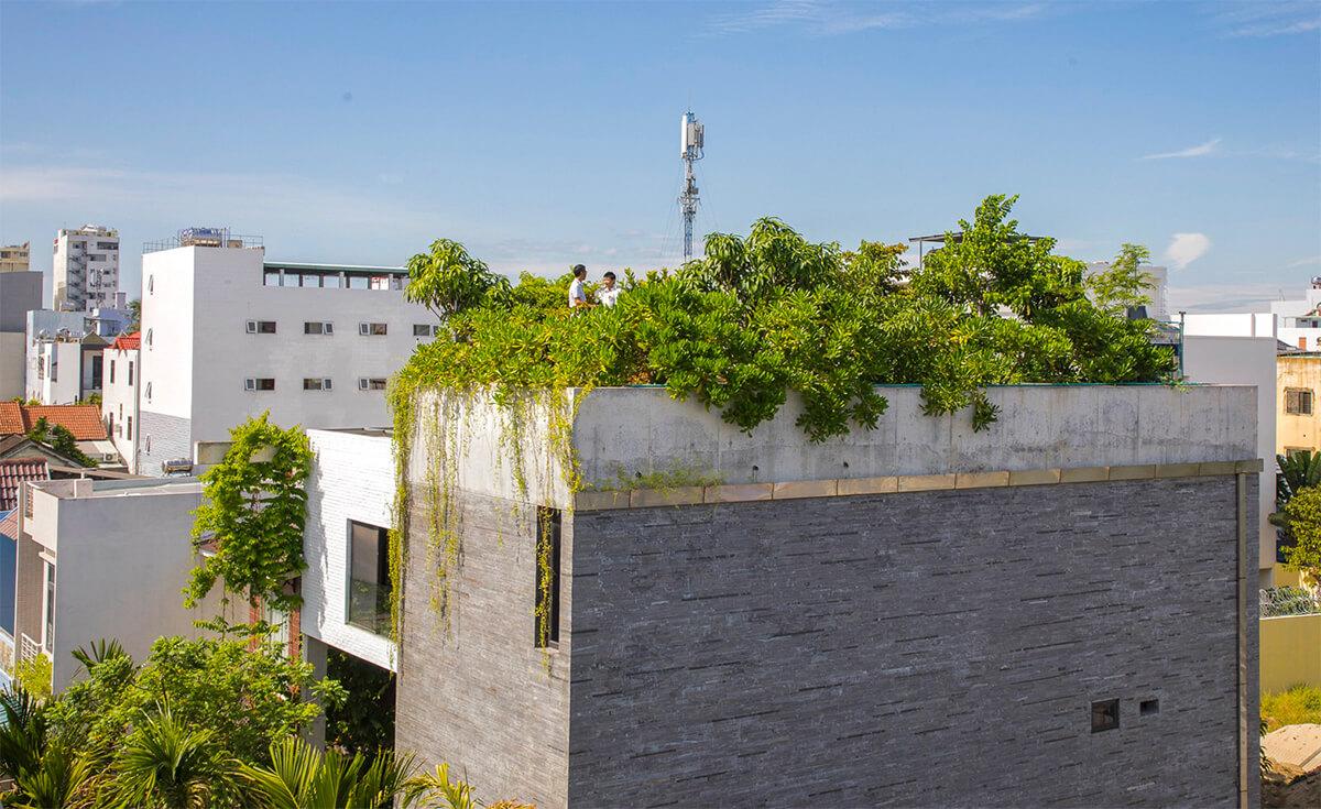 Vo Trong Nghia Architects (Вьетнам). Дом с деревьями на крыше