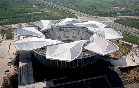 Самая большая в мире магнолия Qi Zhong