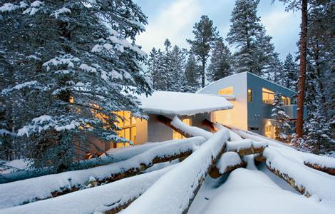 Дом на упавших деревьях