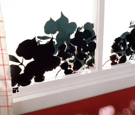 Цветы для клумбы  Дом садогород Floretsru