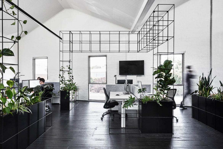 Tom Robertson Architects (Австралия). Зеленый офис