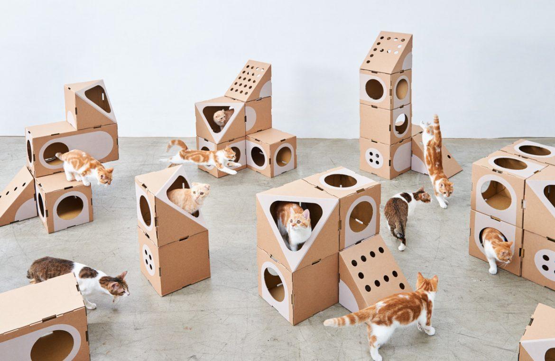 A cat thing (Тайвань). Модульный кото-дом